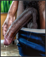 Black erect cock